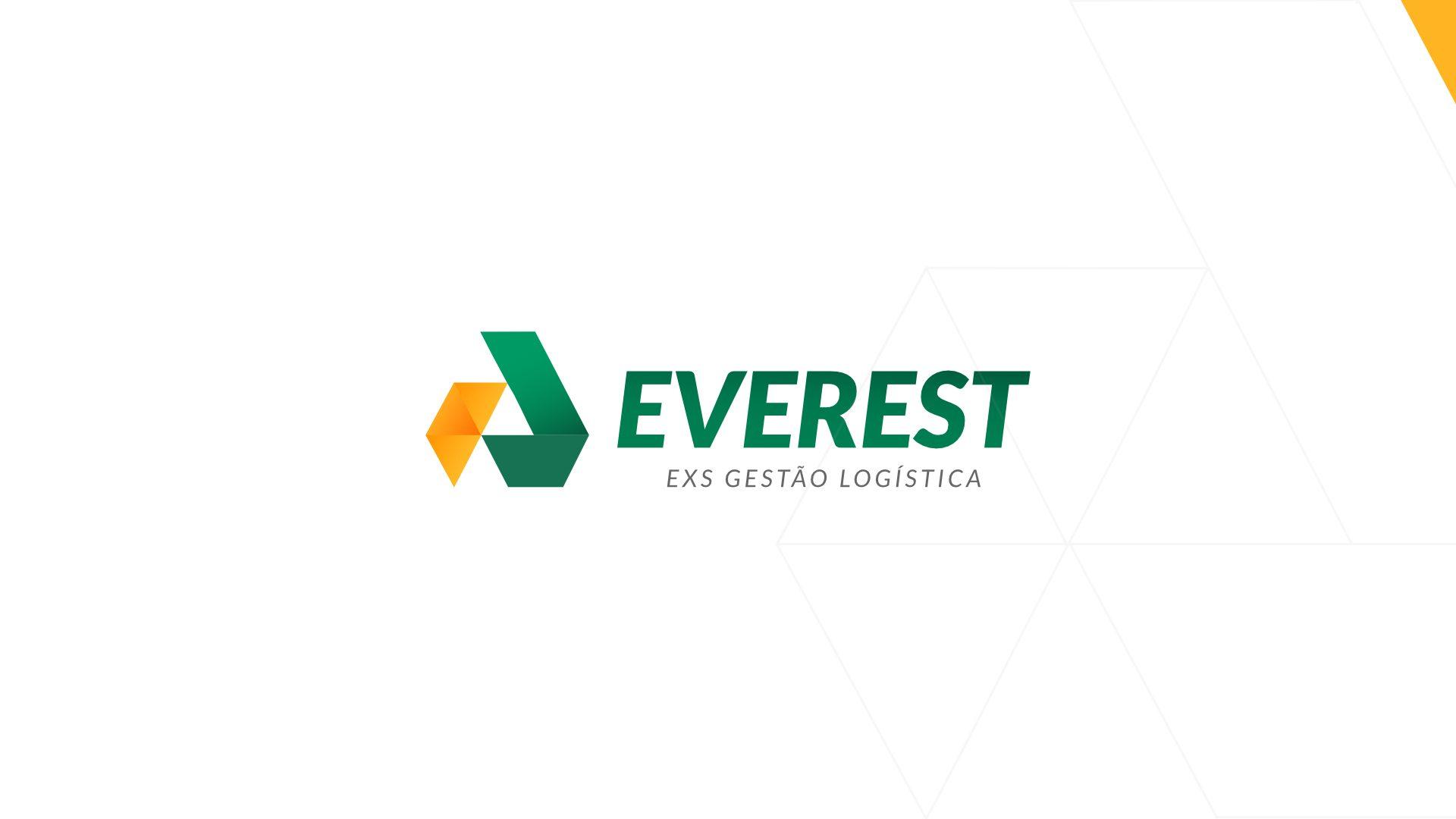 logo everest 2019 cliente
